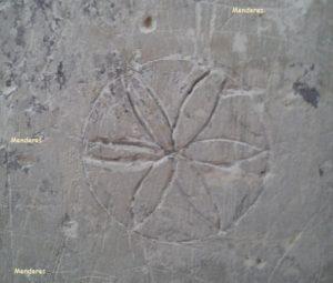 Çiçek – Gül – Papatya İşareti