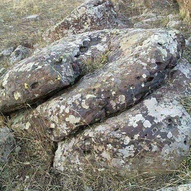 çöreklenmiş yılan, Tılsımlı Yılan İşaretleri