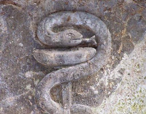 kabartma yılan
