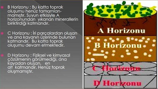 b,c,d, Horizonlar