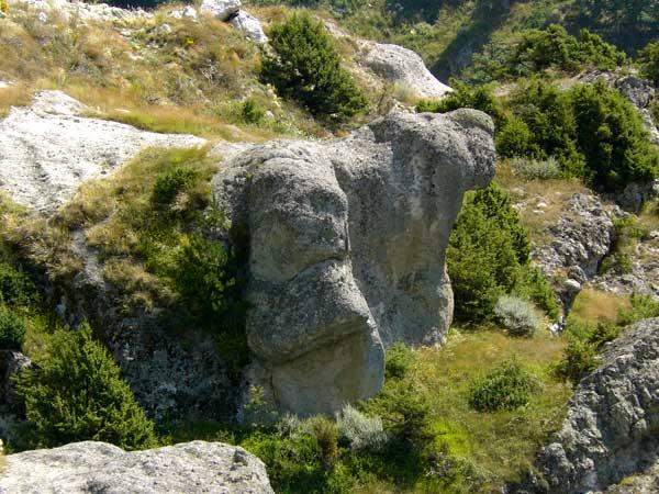 Volçanın İlk Meskeni ve Türkiye'ye Girişi