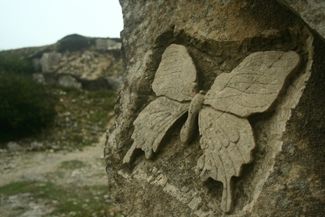 kabartma kelebek