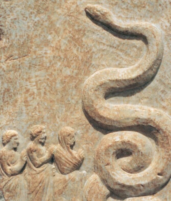 yılan define işareti resmi