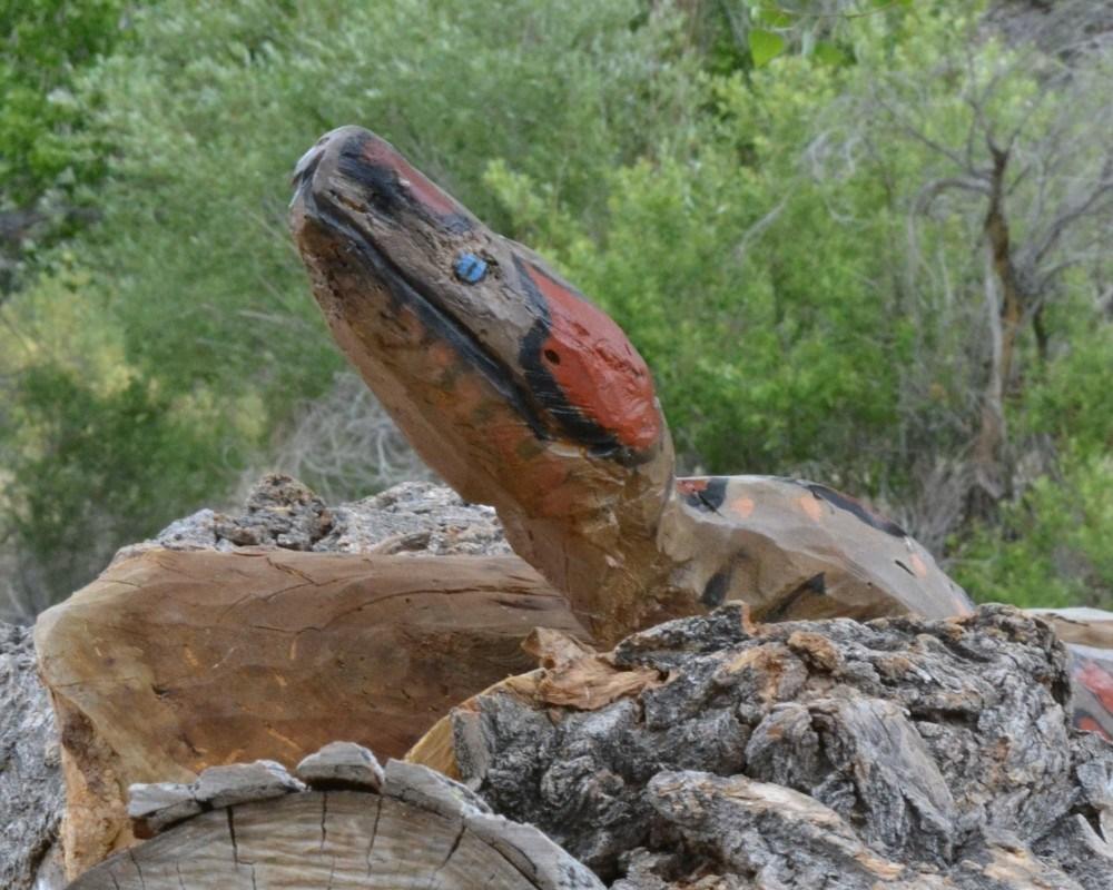 yılan kafası,