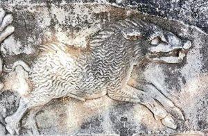 Kayada Domuz İşareti Anlamı, Mitolojide Domuz