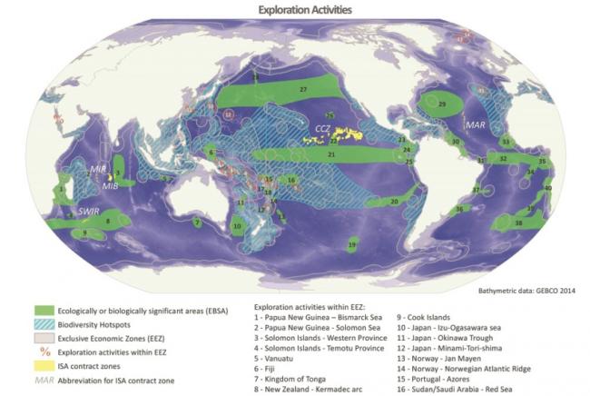 Deniz Madenciliği Sorunları, Balıklar Risk Altında Mı