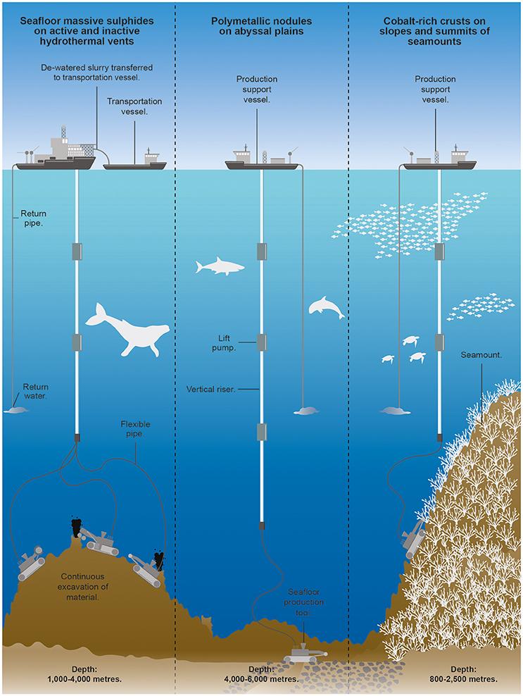 Üç ana maden yatağı türü için derin deniz madenciliğinde yer alan süreçleri gösteren şematik. Ölçeklememek için şematik.