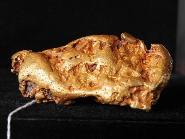 10.7 kg Ağırlığında Altın Bulundu