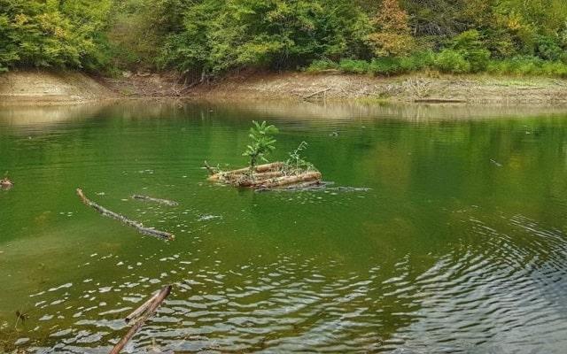 Sarı Göl, Eşkiya Belgeleri